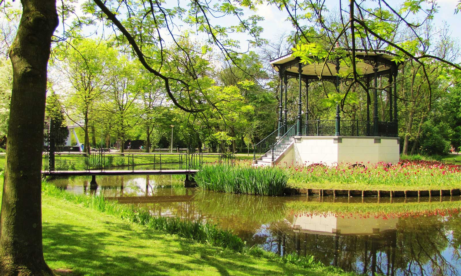 Vondelpark - Nature - Park - Yeşillik